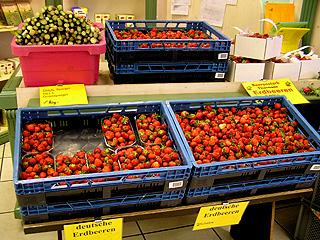 erdbeerenprodukt008