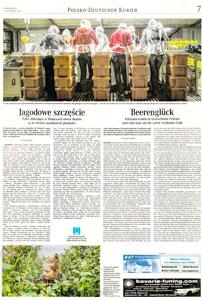 weserkur-artikel