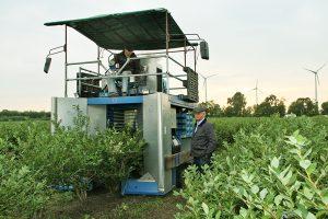 Heidelbeerpflueckmaschine